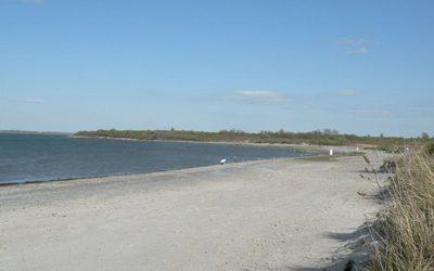 Top Beaches in Rhode Island